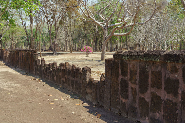 View of footpath by the wall