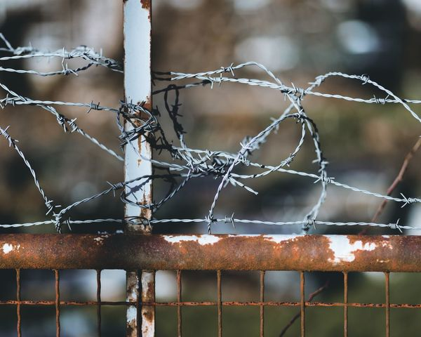 Fence Sicherheit Zaun Schutz Police Military Guard Steel EyeEm Selects Metal Safety Protection Rusty Security Close-up Focus On Foreground Day Barbed Wire No People Outdoors Prison EyeEm Ready