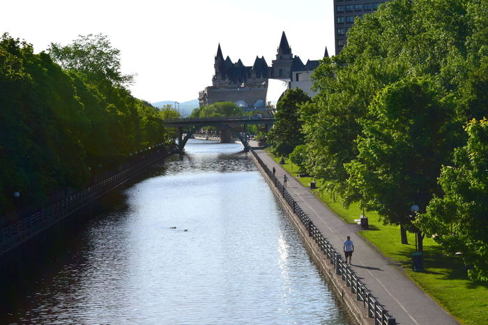 Architecture Bridge Bridge - Man Made Structure Building Exterior Built Structure Canal Canal Rideau Chateau Laurier Hotel Day Famous Place Flowing Water Green Color Outdoors Rideau Canal River Riverbank Sky Tourism Tranquil Scene Tranquility Travel Destinations Tree Vacations Water Waterfront