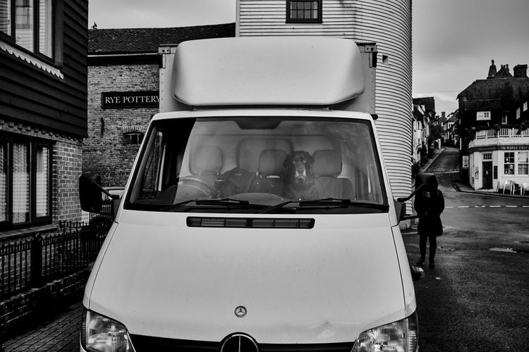 Rye, England - December 2018 My Best Photo RYE Building Exterior Dog Outdoors Streetphotography Mode Of Transportation Incidental People Travel Lifestyles Guard Guard Dog Security Alarm Clock