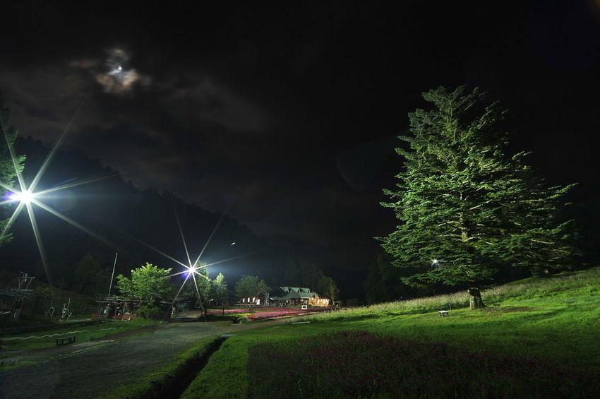 ヘブンスそのはらに星を観に行ったんだけど、曇ってて星がほとんど見えなかったので、悔し紛れにセンターハウスを撮ってみた。(笑) Night Tree Outdoors No People Lightning Nightphotography Night Lights Night Photography Night View Night Sky Nightshot ヘブンスそのはら
