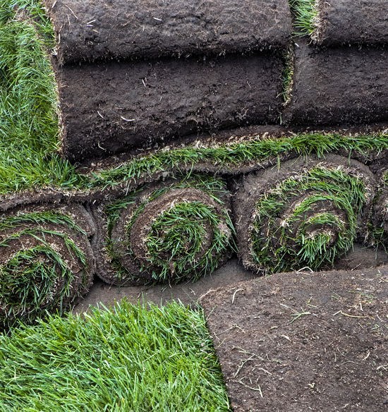 Rolled sod ready for a new lawn or to repair an established one. Gardening Grass Green Growing Grass Rolled Sod Soil And Grass Stack Erosion Control Front Or Back Yard Garden Center Ground Ground Cover Growth Landscaping Lawn No People Outdoors Plant Seeding Grass Skids Of Sod Sod Roll Soil Turf
