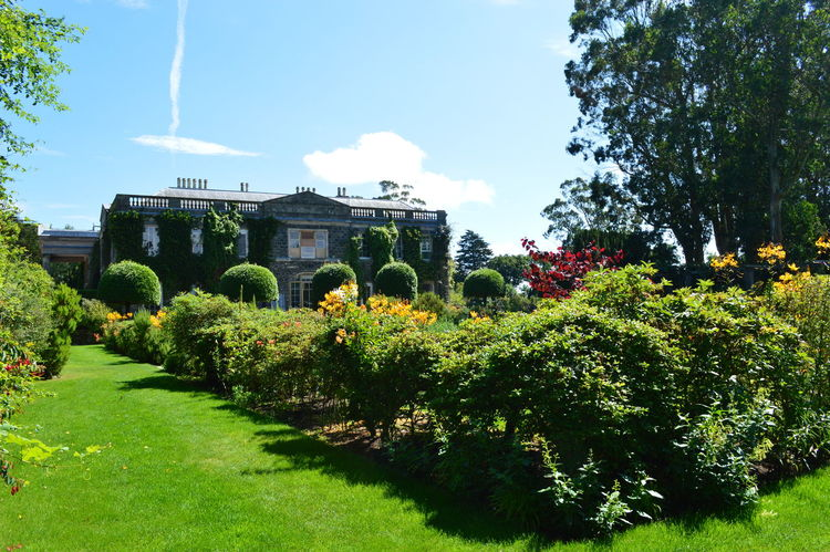 Beauty In Nature Cloud - Sky Flower Grass Green Green Color Growing Growth Landscape Lawn Lush Foliage Mount Stewart Mount Stewart Gardens Mount Stewart National Trust Nature Northern ıreland Old Country Pile Outdoors Scenics Sky Stately Home Sunlight Tranquil Scene Tranquility Tree