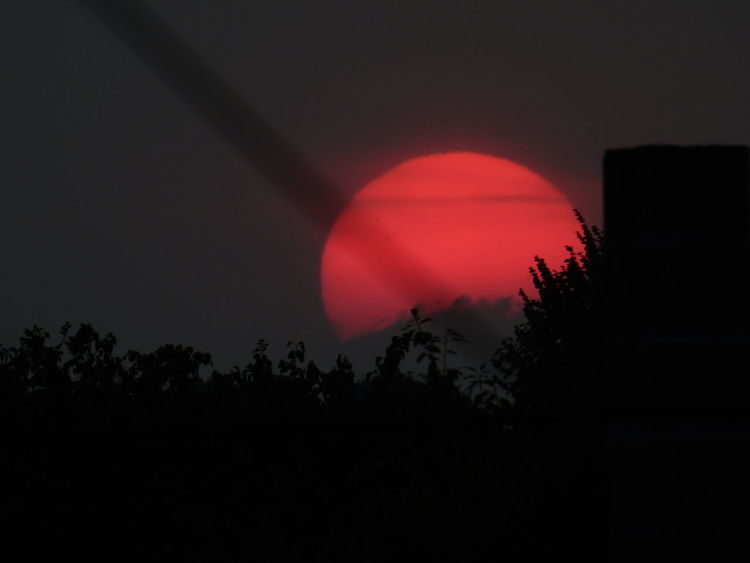 A power cable blocked my view but a great pic nevertheless! :) Red Beauty In Nature Blood Sun Crimson Nature No People Outdoors Scenics Silhouette Sky Sunset Tree