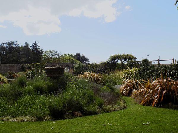 Worthing Taking Photos Relaxing lovely little garden