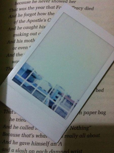 Forbidden Book The Perks Of Being A Wallflower Polaroid