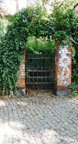 Closed gate on footpath