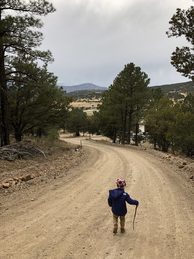 Child hiking with a stick on a dirt road in New Mexico with mountain view in background. Hikingadventures Hiking Child Rear View The Way Forward Tree Forest Dirt Road Outdoors Full Length Land Kid Lifestyles Direction Real People Beauty In Nature Boy Country Road Countryside Mountain Range Copy Space New Mexico Overcast Nature Stick It's About The Journey