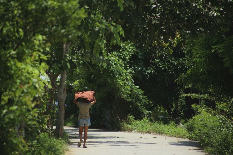 Full length rear view of man carrying container over head while walking on road amidst trees