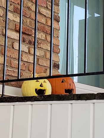 Jack 'O Lanterns on a deck. Halloween Jack 'o Lantern October Autumn Residential Structure