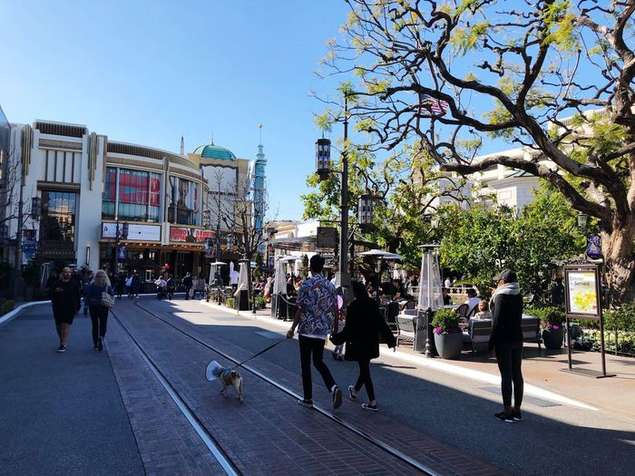 Group Of People City Street Building Exterior Real People Walking Adventures In The City Architecture Tree Sky Built Structure Men Plant Nature Crowd Large Group Of People Lifestyles Transportation Day Adult Outdoors