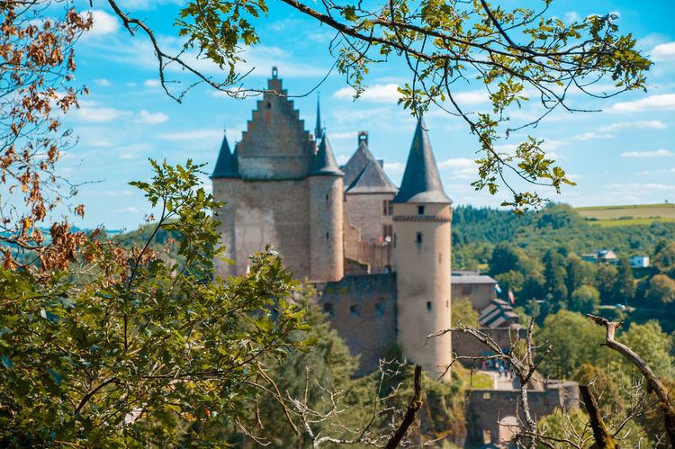 Vianden Castle view through the tree Castle European  Fairytale  Luxembourg Tourist Attraction  Ancient Architecture Architecture Building Building Exterior Built Structure Castle View  Day Daylight Europe Historical Historical Place History Nature No People Outdoors Sky The Past Tower Tree Vianden