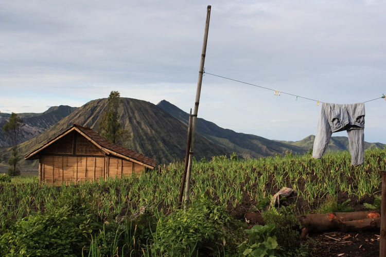 House On Field By Mt Bromo Against Sky