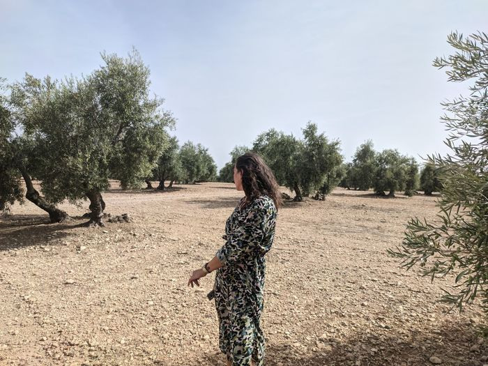 Rear view of woman standing by tree against sky