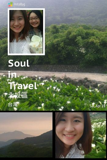 In Mountain In April Calla Lily ❤ With My Sister  Taiwan so beautiful♥♥♥
