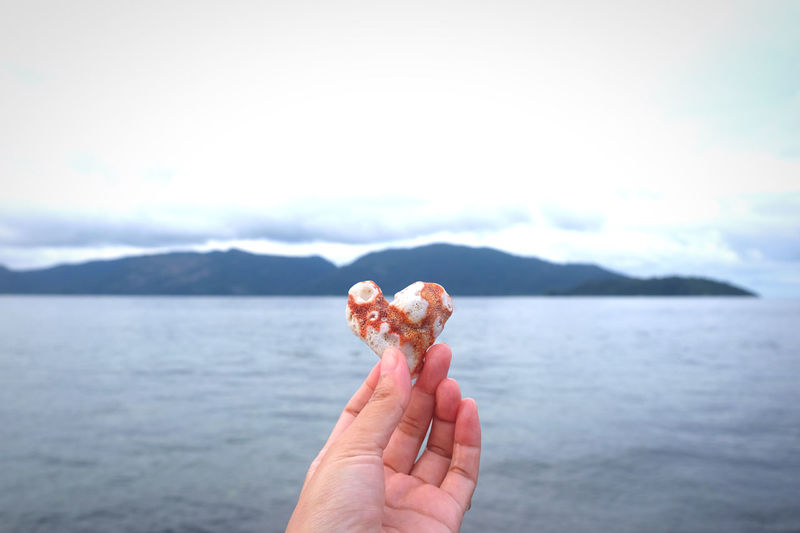 Human hand holding sea heart red coral against sky