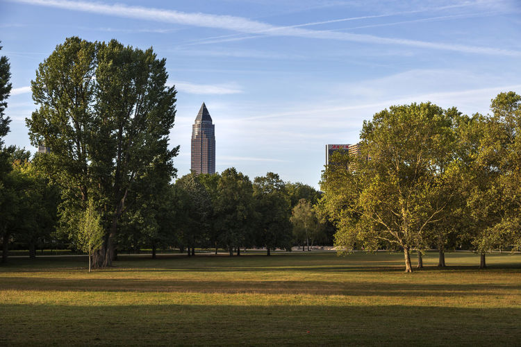 Trees in park by city against sky