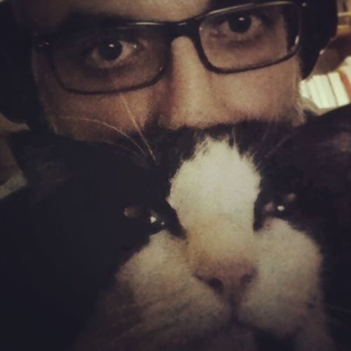 Sandro!!! I have to work! :-D Cat Gatto Blackandwhite Cutepets Selfie Selfiewithcat Faces Of EyeEm