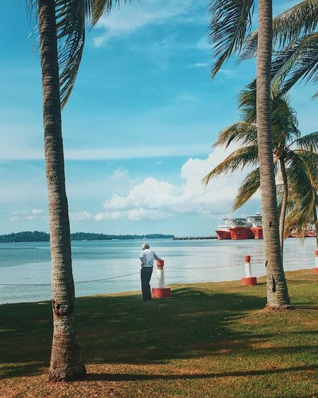 An elderly man looking into the sea Sea Water Real People Full Length Leisure Activity Lifestyles Rear View Sky Palm Tree Beach Men Nature One Person Cloud - Sky Tree Horizon Over Water Day Beauty In Nature Standing Outdoors Elder Reflecting Thoughts Life Retirement