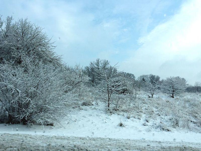 It's a Winter Wonderland Cold Winter Weather Trees Indiana January 2015 Deepfreeze