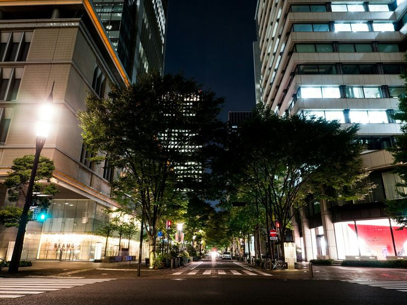 丸の内仲通り / Marunouchi Naka-Dori Street Night Night Lights Night View Nightphotography Street Streetphotography Olympus Trees Buildings