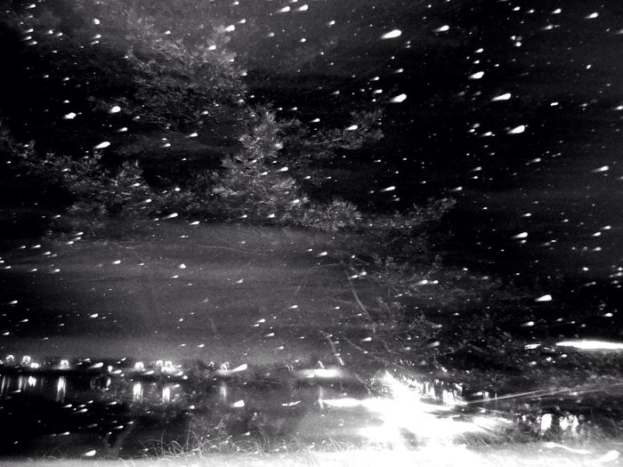 Monochrome Black & White Blackandwhite Snow Dance