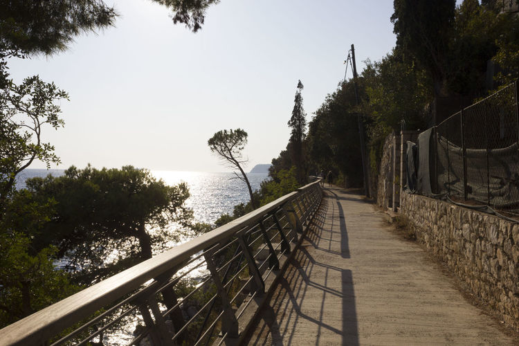 Lapad Dubrovnik Outdoors Sea Seascape Croatia Adriatic Sea Croatia ♡ Nobody Summer Tree Plant Nature Water Railing Sky Footpath Growth The Way Forward Day Direction Tranquility Clear Sky No People Beauty In Nature Connection Sunlight Tranquil Scene Scenics - Nature Diminishing Perspective