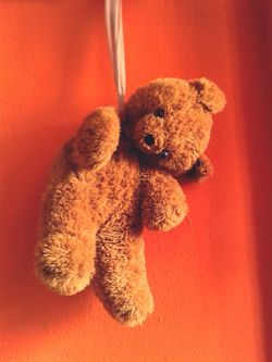 I give it up :( Suiside Awareness Die Teddy Bear
