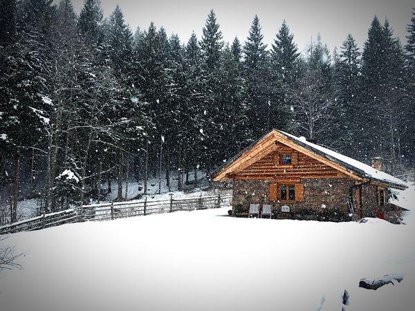 Baita, neve, silenzio, bosco,