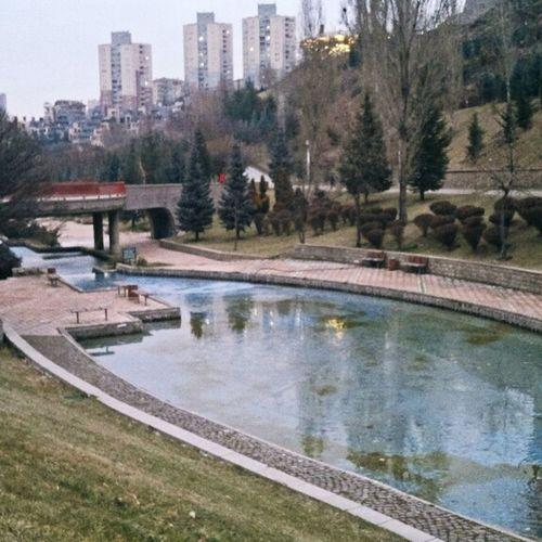 iN Ankara ,dikmen