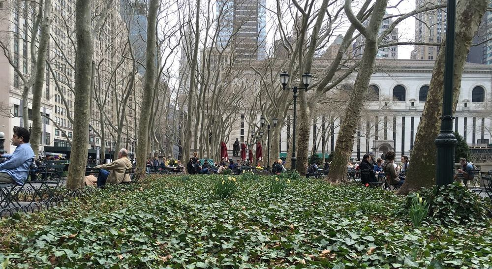 Architecture Bryant Park NYC Building Exterior Built Structure City City Life Day Grass Growth Large Group Of People Leisure Activity Lifestyles Men Nature Outdoors Park - Man Made Space Person Plant Tree Tree Trunk Showcase April