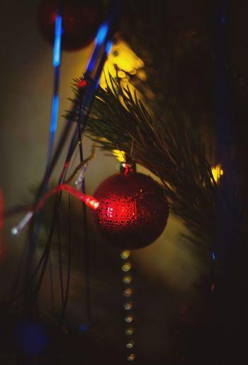 New Years New Year Around The World CRISTMAS💙 Cristmas Tree Cristmastime Happy New Year Cristmas Tradition New Year Cristmas Time♥ Cristmastree Cristmas Cristmasdecor Marry Christmas Christmastime