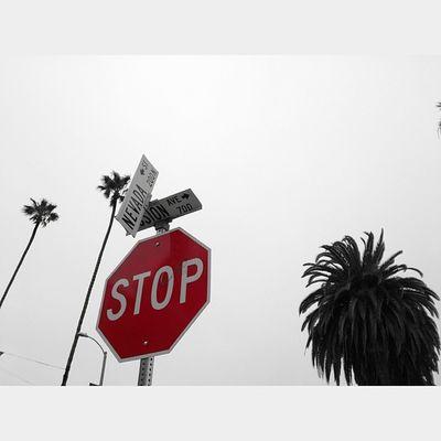 Dnt Stop Chasin Dreams. Colorsplash Blackandwhite Dontstop Blackandwhite Monday