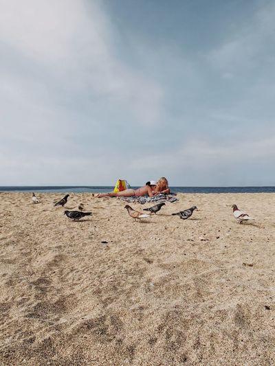מייבתגלים מייים ShotOnIphone מייאייפון10 IPhoneX Sea Sky Water Land Beach Horizon Horizon Over Water