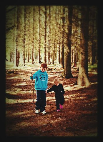 A Walk In The Woods WoodLand Bestfriends Cousins ❤ Nature Trees Nature On Your Doorstep Beautiful Day The Great Outdoors - 2015 EyeEm Awards Connected With Nature
