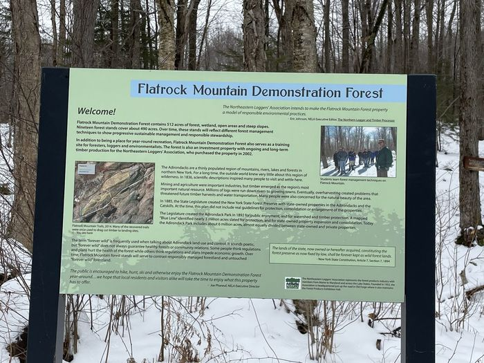 Information sign on tree trunk