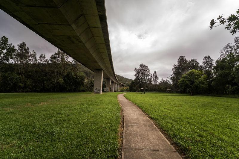 Bridge - Man Made Structure Australia Newsouthwales Midnorthcoast Tree City Grass Sky Cloud - Sky Park - Man Made Space
