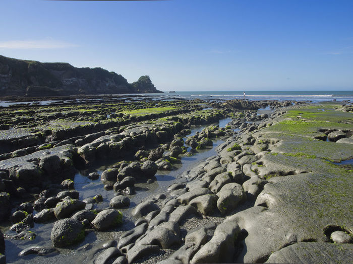 Tiromoana at low tide Water Sea Scenics - Nature Beauty In Nature Sky Rock Land Tranquil Scene Tranquility Beach Solid Nature Day No People Clear Sky Environment Non-urban Scene Horizon Outdoors Horizon Over Water Surface Level Rocky Coastline New Zealand Landscape