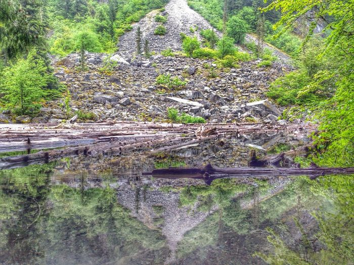 picture doesnt do justice how beautiful it is. Lindemanlake Beautifulbc Nature Eye Em Nature Lover