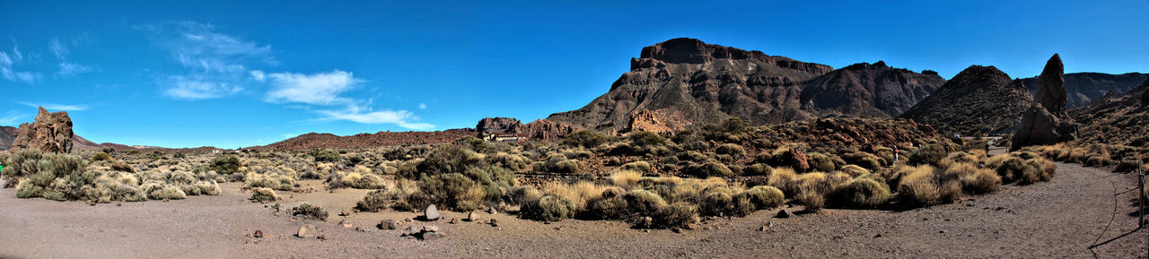 Arid Climate Beauty In Nature Blue Canadas Del Teide Clear Sky Day Desert Landscape Large Group Of Animals Mammal Mountain Nature Nature_collection Outdoors Panoramic Rock - Object Sand Scenics Sky Teide Teide National Park Tenerife Travel Destinations