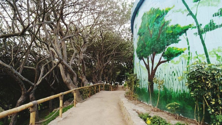 Tree Outdoors Plant Nature Day The Way Forward Panoramic No People Road Bare Tree Beauty In Nature Sky Grass Water Peru Nature Graffiti Art Loma Amarilla