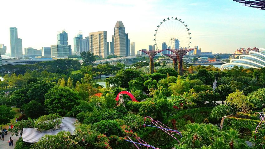 Singapore mi amor ;) Taking Photos Hello World Enjoying Life Enjoying The Sights View