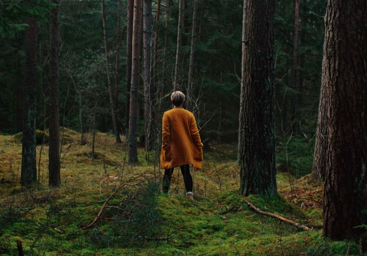 Into the woods Rear View Forest Tree Walking Nature WoodLand One Person Outdoors One Man Only Vscocam Day Into The Woods Into The Wild Orange Color Green Color Woods Klaipeda Lithuania Lithuania Nature Lithuanian Girl Nikon Nikonphotography 35mm EyeEmNewHere