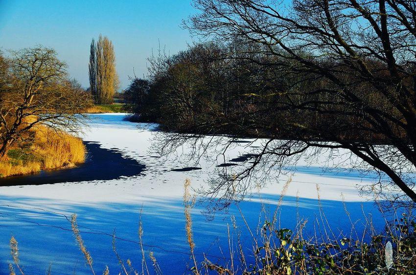 Naarden Vesting IJS ıce Naarden Naardenvesting Tree Water Sky Nature Lake Beauty In Nature Waterfront Nederland Netherlands Photography Photooftheday Dutch Sun Zon Winter