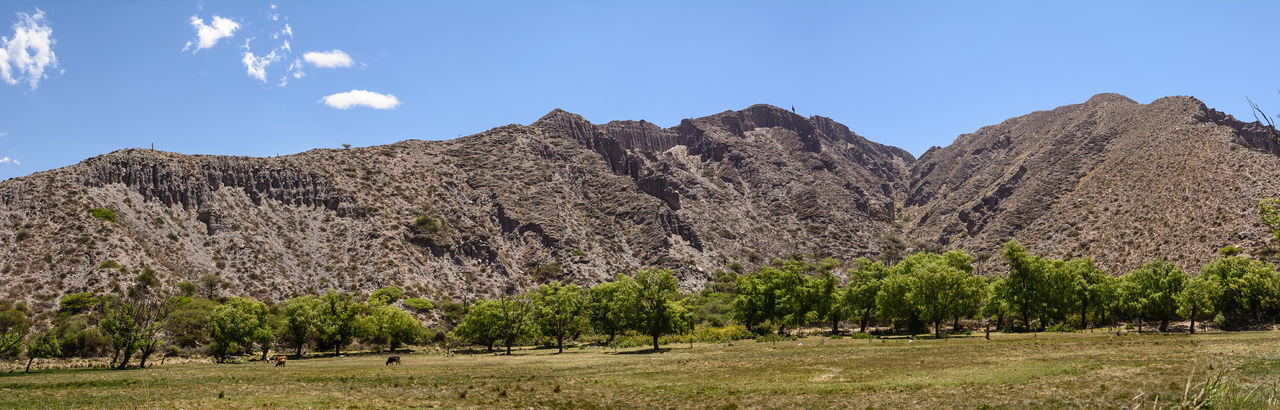 Landscape of mountain in Jujuy's province (Argentina) Altiplano America Andes Argentina Jujuy Landscape Mountain Mountains No People Peak Province Quebrada Rock Formation Salta  Scenics Tilcara Tree Trees