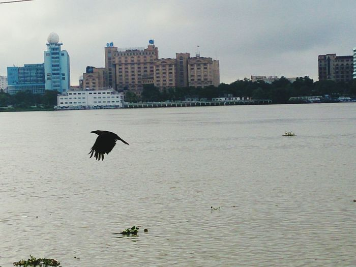 Mrng Birds Holy River Ganga Refreshing :) Kolkatadiaries Landscape Feel The Fresh Vibes Motion Shot By Sony