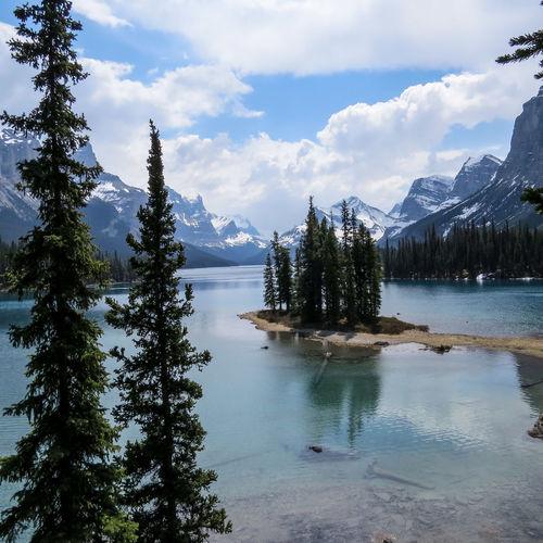Reflection Water Landscape Natural Parkland Jasper National Park Canadian Maligne Lake Rockies MaligneLake Mountain Tree
