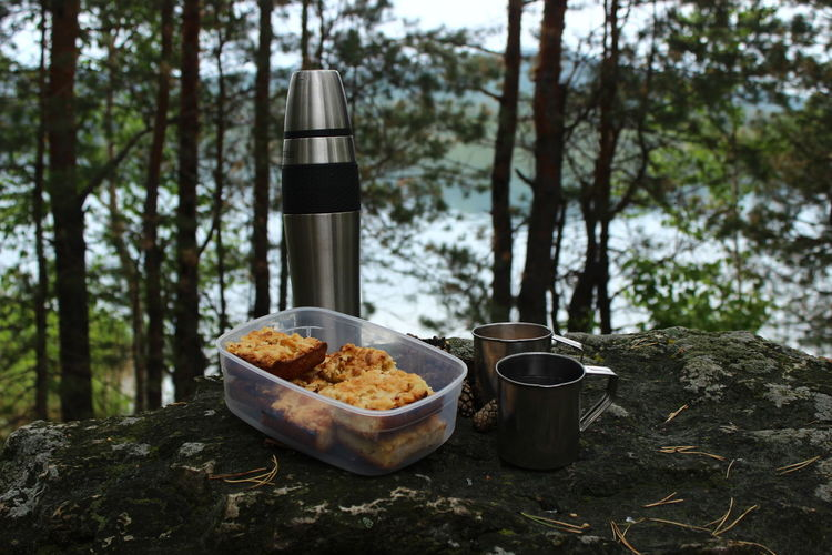 breakfast of the traveler and camp near the lake in the forest. Pine Cone Pine Needles Stone Pie Slice Of Cake Beverage Breakfast Morning Tea Thermos Travel Photography Trip Black Tea Container Cup Drink Food Food And Drink Forest Lake Milk Mountains Nature No People Ready-to-eat Refreshment Silence Of Nature Still Life Tree Black Coffee