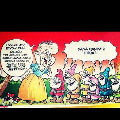 Gezi Gezipark ı Hukumetistifa Istanbul izmir hatay adana ankara heryertaksimheryerdireniş yandaş turkey turkiye taksim direnistanbul direnturkiye direngeziseninleyiz komik comic karikatür penguen gırgır diren
