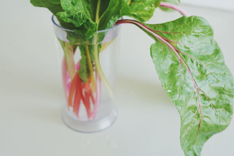 High angle view of rhubarb in container on gray background